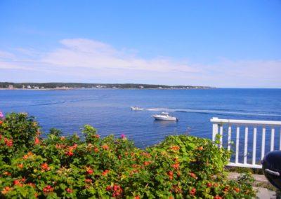 Ocean Rental Properties22